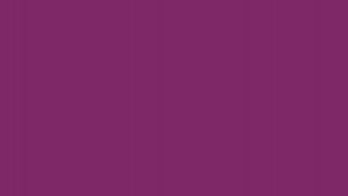 viola